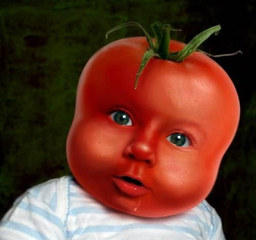 Tomate bebe